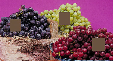Version F. Squares of all three fruits are selected simultaneously, followed by Filter: Blur>Average to obtain the yellow-brown that is the average of the three grape colors.